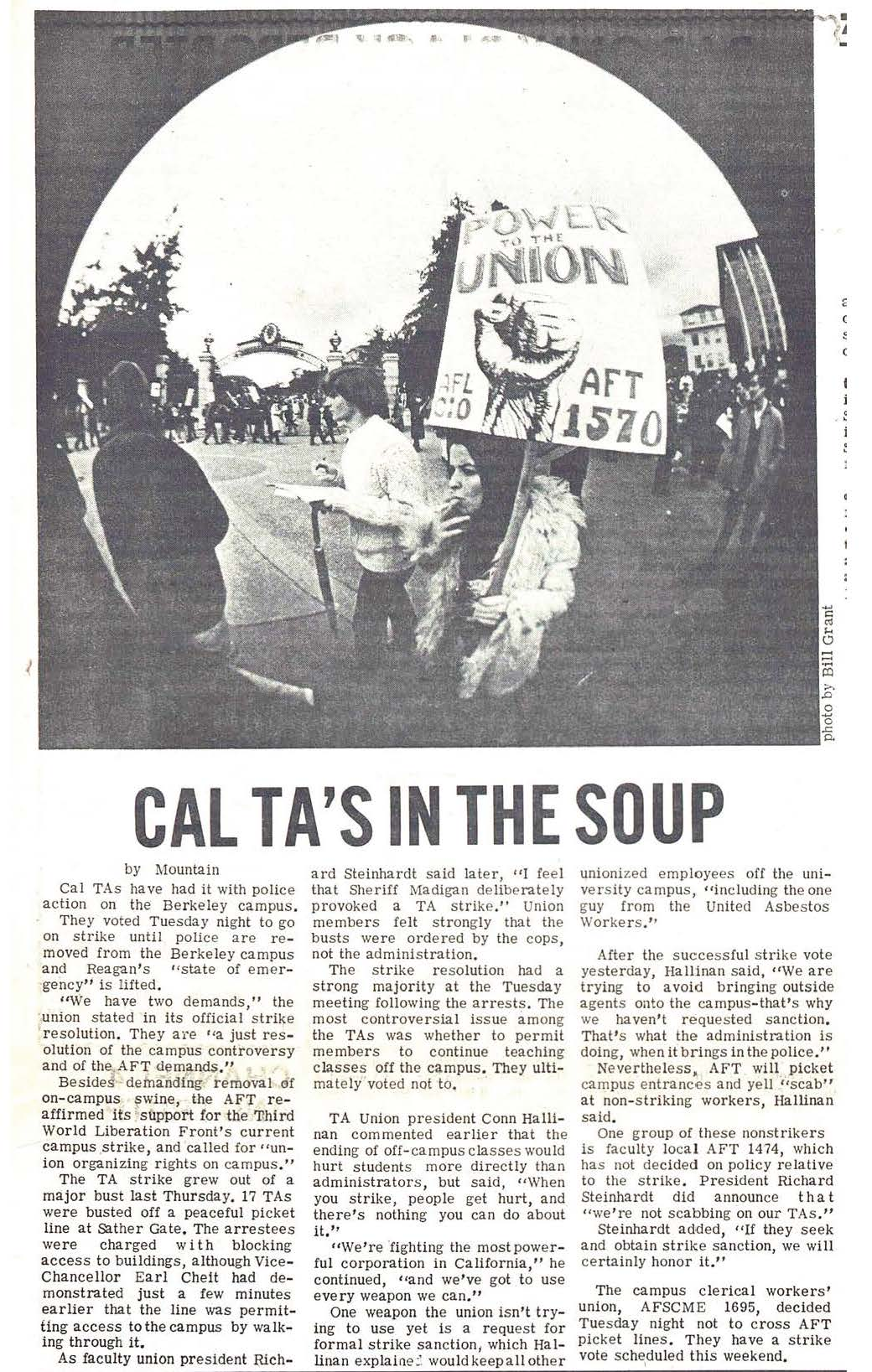 Cal TA's in the Soup